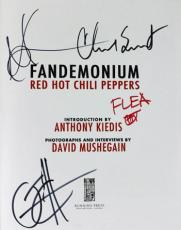 RHCP(4) Flea, Kiedis, Smith & Klinghoffer Signed Fandemonium Book PSA #Y07982