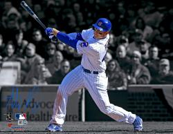 """Anthony Rizzo Chicago Cubs Autographed 11"""" x 14"""" Spotlight Photograph"""