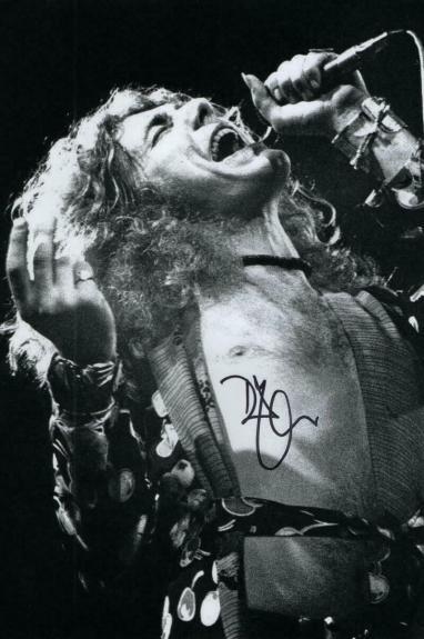 Robert Plant Signed Autograph 8x12 Photo - Led Zeppelin Iconic Image Rock Legend