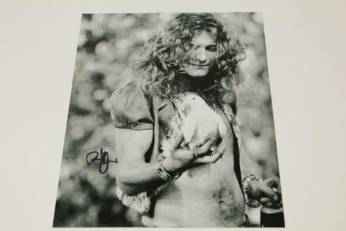 Robert Plant Signed Autograph 8x10 Photo - Shirtless Led Zeppelin Stud, Rare!
