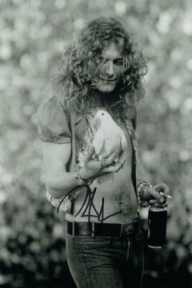 Robert Plant Signed Autograph 8x12 Photo Young Shirtless Led Zeppelin Stud Real