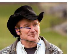 Robin Williams Autographed Signed 8x10 Photo UACC RD AFTAL