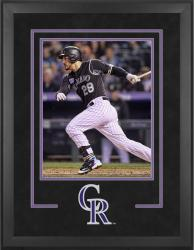 "Colorado Rockies Deluxe 16"" x 20"" Vertical Photograph Frame - Mounted Memories"