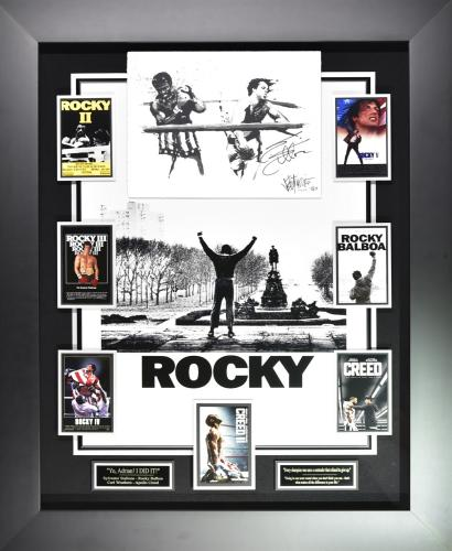 "Rocky ""The Punch"" Framed Display"