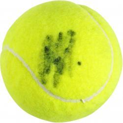 Andy Roddick Autographed Tennis Ball