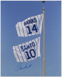 Ron Santo Chicago Cubs Autographed 16'' x 20'' Retired Number Flag Photograph - Mounted Memories