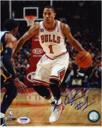 "NBA Chicago Bulls Derrick Rose Autographed 8"" x 10"" Photo - Mounted Memories"