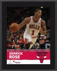 Derrick Rose Chicago Bulls Sublimated 10.5'' x 13'' Plaque - Mounted Memories