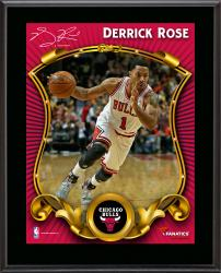 "Derrick Rose Chicago Bulls Sublimated 10.5"" x 13"" Stylized Plaque"