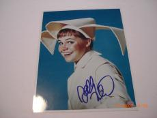 Sally Field Flying Nun Actress Mead Chaskey/holo Signed 8x10 Photo