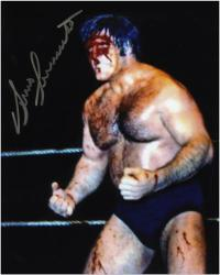 Bruno Sammartino Autographed 8'' x 10'' Blood Photograph - Mounted Memories