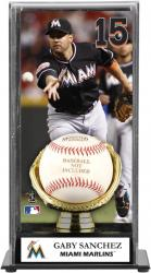 Gaby Sanchez Miami Marlins Baseball Display Case with Gold Glove & Plate