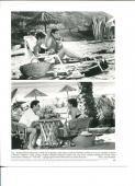 Sandra Bullock Jeremy Northam The Net Original Press Still Movie Photo