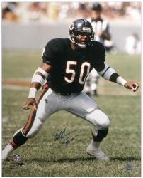 "Mike Singletary Chicago Bears Autographed 16x20 Photograph with ""HOF 98"" Inscription - Mounted Memories"