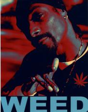 Snoop Dogg Autographed Signed 11x14 Weed Photo UACC RD COA AFTAL