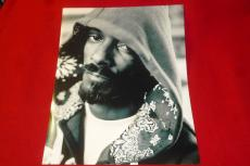 SNOOP DOGG lion rapper signed 11X14 photo 6 COA