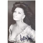 Sophia Loren Autographed Postcard