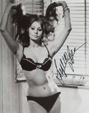 SOPHIA LOREN HAND SIGNED 8x10 PHOTO+COA         SEXY POSE IN HER BRA+PANTIES