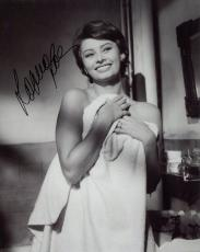 SOPHIA LOREN HAND SIGNED 8x10 PHOTO+COA       VERY SEXY POSE IN A TOWEL