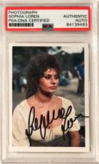 Sophia Loren SEXY VINTAGE ACTRESS Signed 2x3 Photo Card PSA/DNA Slabbed #1