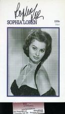 Sophia Loren Signed Jsa Certified 6x9 Photo Authentic Autograph