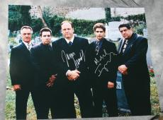 Sopranos Signed James Gandolfini Imperioli 16x20 Photo Jsa Loa Tony Christopher