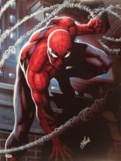 Spiderman Stan Lee Signed Spider-Man 18x24 Photo Marvel Comics PSA