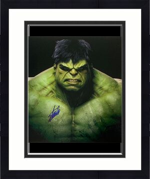 Stan Lee Autographed 16X20 Photo (Hulk)