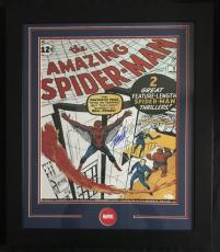 Stan Lee Autographed 16x20 The Amazing Spider-Man Framed Photo JSA Authentic