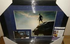 Stan Lee Black Panther Signed Autographed 13x16 Matted & Framed Rare Jsa Coa C