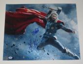 Stan Lee Chris Hemsworth Signed 16x20 Photo Avengers Excelsior Hologram Psa Loa
