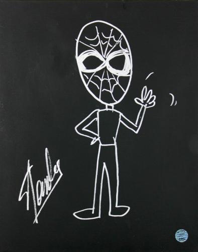 Stan Lee Signed 16x20 Canvas w/ Spider-man Sketch PSA/DNA #W00383