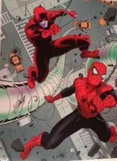Stan Lee Signed Autographed Spider-Man Dare Devil 18x24 Photo Picture PSA/DNA
