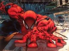 Stan Lee Signed Autographed Spider-Man Spidey 18x24 Photo Picture PSA/DNA