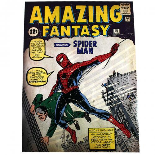 Stan Lee Signed Marvel Comics Retro: Amazing Spider Man 24x36 Poster (Signed in Black)
