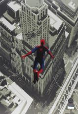 Stan Lee Signed Marvel Spider-Man 2012 20x13 Movie Poster