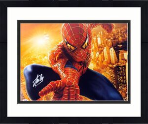 Stan Lee Signed Spider-Man 16X20 Photo Marvel Comics PSA/DNA 16