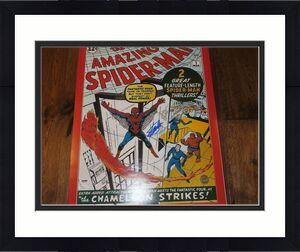 Stan Lee Signed The Amazing Spider-Man 16x20 Photo Autographed PSA/DNA & JSA COA