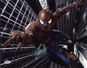 Stan Lee Spider-Man Signed 11X14 Photo Autographed PSA/DNA #6A23167