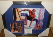 Stan Lee Spiderman Marvel Signed Autograph 13x16 Matted Framed Bas Beckett Coa D