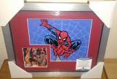 Stan Lee Spiderman Marvel Signed Autograph 13x16 Matted Framed Bas Beckett Coa F