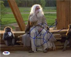 Steve Carell Evan Almighty Autographed Signed 8x10 Photo Certified PSA/DNA COA