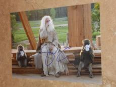 Steve Carell New! Signed *in-person* Evan Almighty Autographed 8x12 Photo Coa