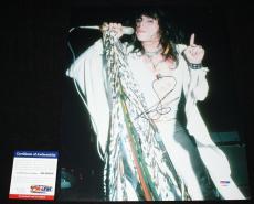 Steven Tyler 11 x 14, Aerosmith, Toys in the Attic, ROCKS, Pump, Get a Grip, PSA