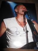 STING SIGNED AUTOGRAPH 11x14 PHOTO THE POLICE IN PERSON PROMO ROCK AND ROLL M