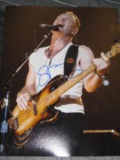 STING SIGNED AUTOGRAPH 11x14 THE POLICE ROXANNE AUTO NY