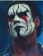 STING Signed WWE WCW 8x10 Photo
