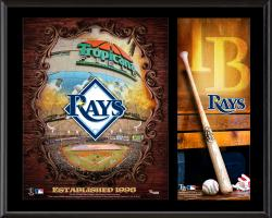 """Tampa Bay Rays Sublimated 12"""" x 15"""" Team Logo Plaque"""