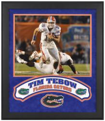"Tim Tebow Florida Gators Framed 16"" x 20"" Photograph with Banner & Logo - Mounted Memories"