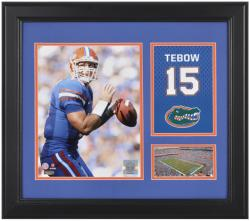 "Tim Tebow Florida Gators Campus Legend 15"" x 17"" Framed Collage - Mounted Memories"